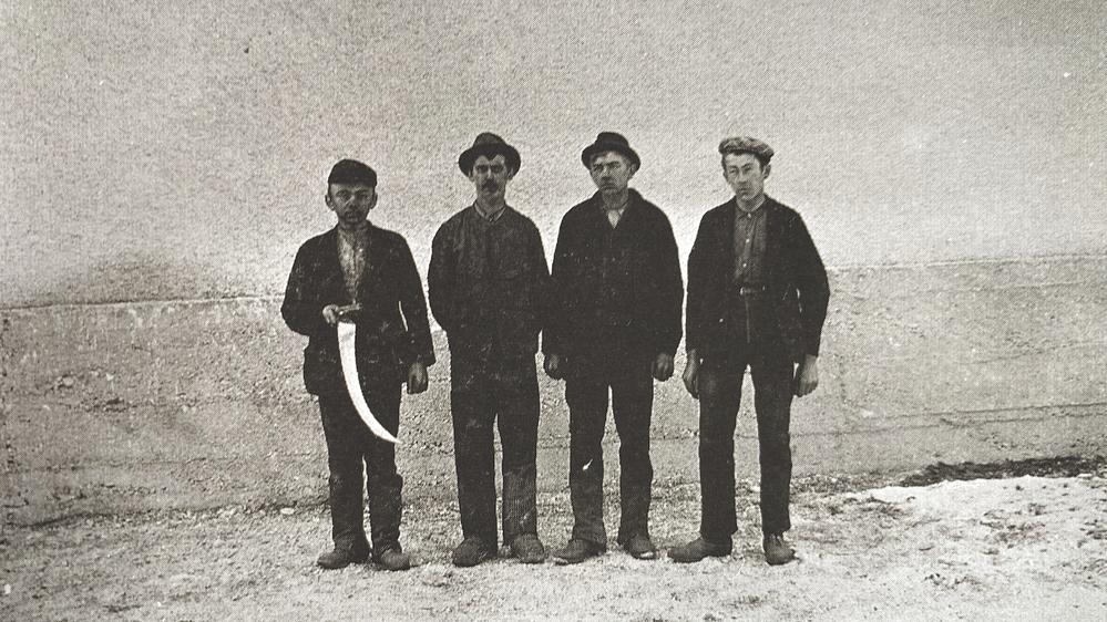 Bild von jugendlichen Arbeitern, Aufn. um 1900