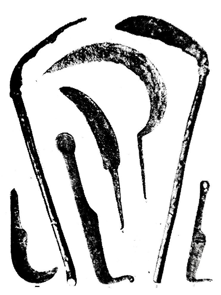 Abbildung von keltischen Eisengeräten von La Tène, darunter zwei Sensen mit Stil und eine Sichel