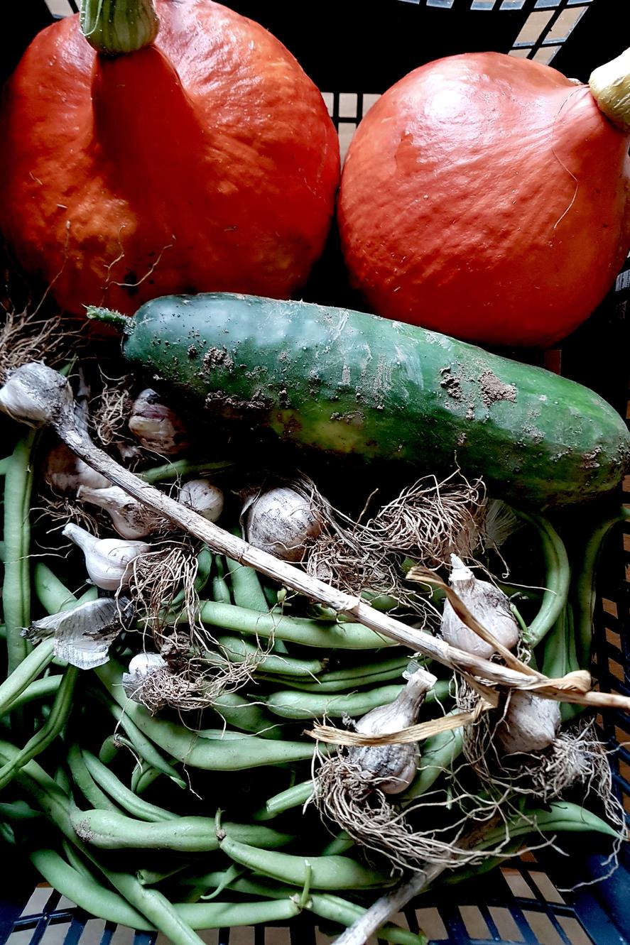 wohlschmeckendes Gemüse